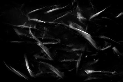 Gone Fishing - Darkness - Dec 2012