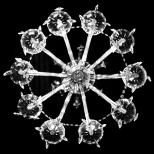Snowflake - June 2012